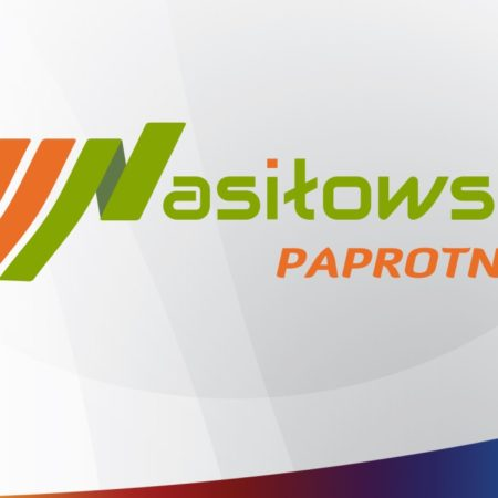piekne strony internetowe logo tworzenie